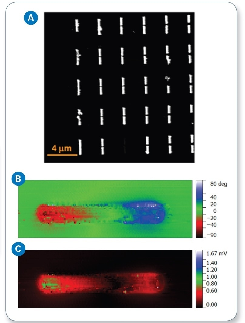 (a) AFM height image of assembled antenna array; (b) s-SNOM phase; and (c) s-SNOM amplitude images of an antenna dipole.