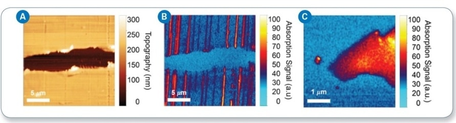 (a) AFM topography imaging of CNTs deposited on a polystyrene substrate; (b) IR chemical mapping at 4000 cm-1 showing absorption by CNTs; and (c) IR chemical mapping image of monolayer graphene captured at 4000 cm-1.