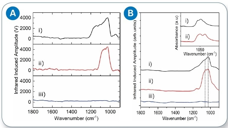 (a) Single-flake AFM-IR spectra of i) PBSrGO, ii) PCNBS-rGO and, iii) U-rGO; and (b) average AFM-IR spectra of i) PBS-rGO, ii) PCNBS-rGO, and iii) U-rGO, dashed lines highlighting the 1084 and 1036 cm-1 intensities used for further chemical mapping studies.