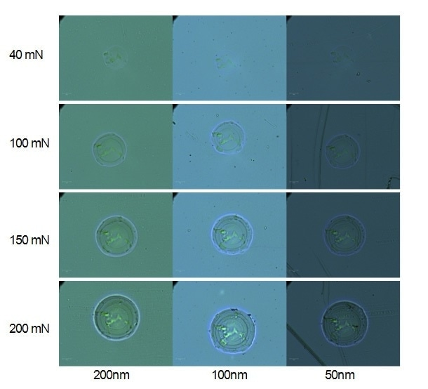 Optical micrographs of residual indents for 4 applied normal loads and 3 coating thicknesses (1000x magnification).