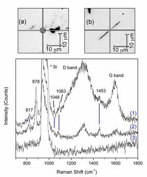 Raman spectra obtained by using nanotube probes. (1) from CNPs with triangles on the inside, (2) from MWNT with triangles attached to the outside, and (3) with no nanotube present, showing the lack of any signal besides from Si. (a) An image of a small cluster of MWNT used to obtain SERS.  (b) An individual nanopipe used to obtain SERS.