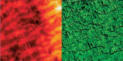 Topography (left) and phase image (right) of Celgard. While oriented fibrillar structures are evident in topography, the phase image additionally reveals lamellar fine structure. Image size 2.5ìm. Closed loop active.