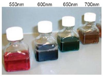 25nm-Axial Diameter Gold Nanorods Kit.