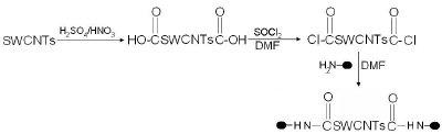Biofunctionalization of SWCNTs by carboxylation, acylation & amidation.