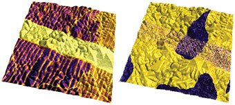Vertical PFM amplitude overlaid on AFM topography (left) and PFM phase overlaid on AFM topography (right) images of lead titanate film, 5µm scan.