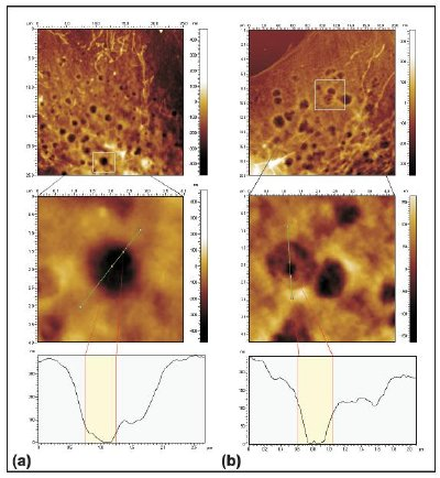 AFM images at two powers of magnification, in which craters and pores are visible and AFM trace scans.