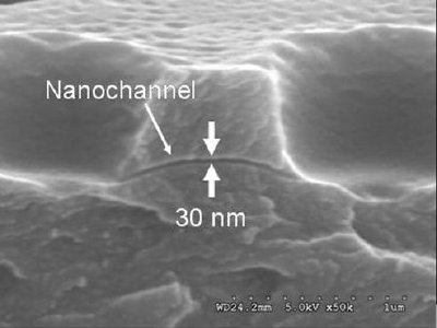 Scanning Electron Micrograph of a nanochannel converted from a DNA nanowire
