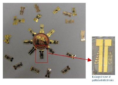 Flexible gold-on-polymer electroenzymatic glucose sensors.