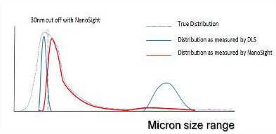 A representation of the distribution of particle sizes which may be contained within an aggregated protein sample.
