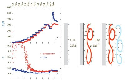 Comparison of DPI and ellipsometery measurements of a polyelectrolyte multilayer construct. At thick layers agreement for thickness (d) and refractive index (n) is excellent. At reduced thicknesses ellipsometry requires the knowledge of the RI (or thickness) in order to calculate the thickness (or RI) while DPI can measure arbitrarily thin layers revealing the oscillation in density associated with alternate positive and negatively charged layers depositing.