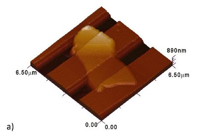 (a) AFM topography image of a Ti/Au contacts-clamped BN nanosheet placed under the trench of a Si/SiO2 substrate; and (b) The measured bending modulus of BN nanosheets as a function of their dimensions.7