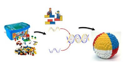 """A concept of programmable self-assembly. Nano-components of various types (lego-blocks) are directed by """"smart"""" glue, biomolecules (for example, DNA), that encode how components interact, that leads to formation of final structure."""