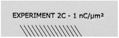 FIB Text annotating experimental conditions