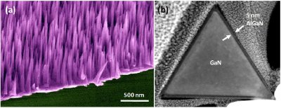 (a) Scanning electron microscope (SEM) image of aligned GaN nanowire growth on sapphire; (b) transmission electron microscope (TEM) image of a GaN nanowire with AlGaN shell layer showing its triangular cross-section.