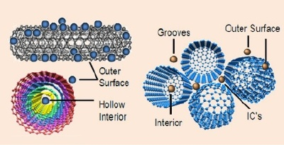 Possible binding sites available for adsorption on (left) MWNTs and (right) SWNTs surfaces.