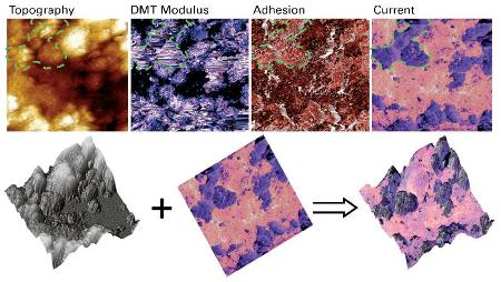 PF-TUNA images of a Li[Ni1/3Mn1/3Co1/3]O2 composite cathode, on the top row are topography, DMT modulus, adhesion and current maps. The overlay of a current map on topography is shown on the bottom row. Images were taken on a Dimension ICON AFM in ambient conditions, with a DDESP probe (spring constant was calibrated to be 93N/m), 50ìm scan at a DC sample bias of 500mV.