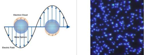 (Left) Surface plasmon resonance where the free electrons in the metal nanoparticle are driven into oscillation due to a strong coupling with a specific wavelength of incident light. (Right) Dark field microscopy image of 60 nm silver nanoparticles (Aldrich Prod. No. 730815).