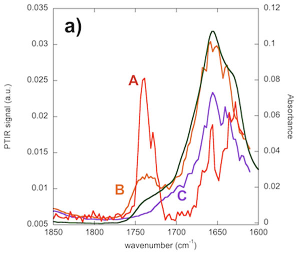 Comparison between local (A in red, B in orange, C in violet) AFM-IR spectra and FTIR spectrum (in green) of the bacteria culture
