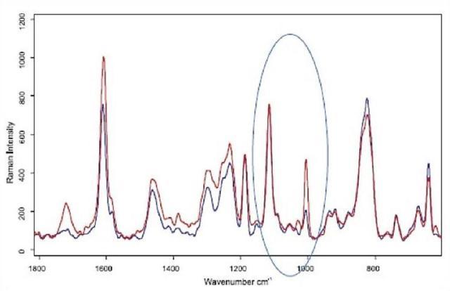 Two Raman spectra taken from sample in figure 9.