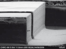 SEM Image of 20 µm hot embossed micro fluidic channels utilizing polymeric stamps (height 180 µm). Source: IMI-CNRC.