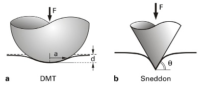 Contact mechanics in AFM. In a, the DMT fit is based on a Hertzian assumption but states that the adhesion forces are focused outside the contact area. This is well adapted to high-density polymers and poorly deformable samples. In b, the Sneddon fit considers the tip as an infinite conical indenter, which is well adapted to soft (biological) and deformable samples.