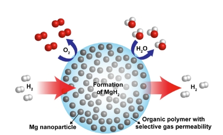 Magnesium nanoparticles in a polymer matrix could contain hydrogen safely and in high density, allowing it to be stored and transported efficiently.
