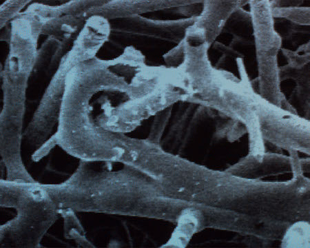 A close-up image of the fine polymer fibres that make up aerogel