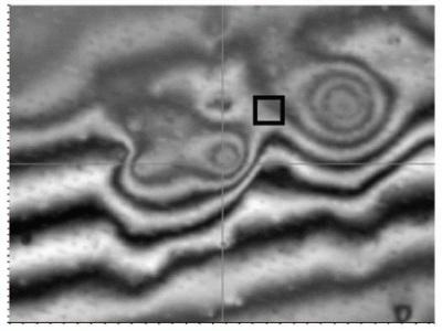 50X interferometric objective intensity image near same site.