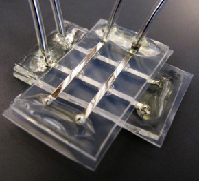 In 2011, researchers from North Carolina State University announced the development of a biocompatible memristor array designed to be used as part of a brain-computer interface.