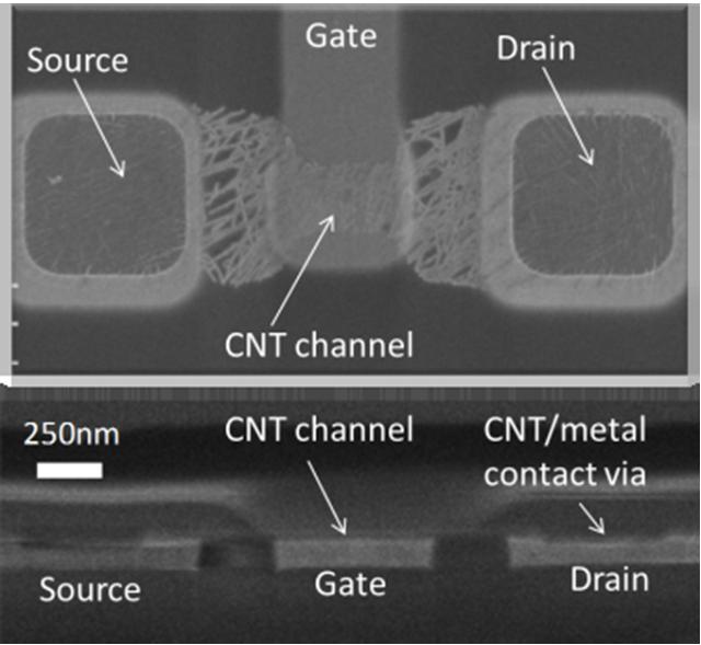 Carbon nanotube field effect transistor.
