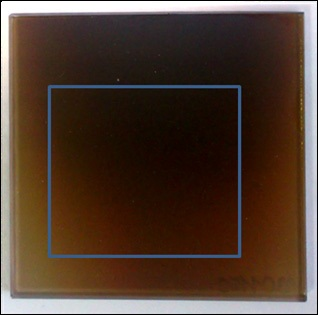 Photograph of the sample with the analysed area indicated by the rectangle.