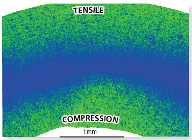 The Local Average Misorientation Map illustrates where there is a high level of misorientation within the sheet. The high misorientaion is an indication of areas of tensile and compressive strain as indicated.
