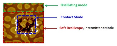 """Areas of a soft sample (polymer blend) measured in contact mode (blue area), then oscillating mode (green area), and finally in """"Soft ResiScope"""" mode (red area)."""