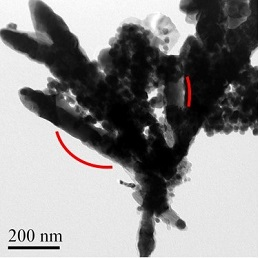 A transmission electron microscope image of the newly synthesized CoFe2C rods that contain an assembly of nanoparticles.