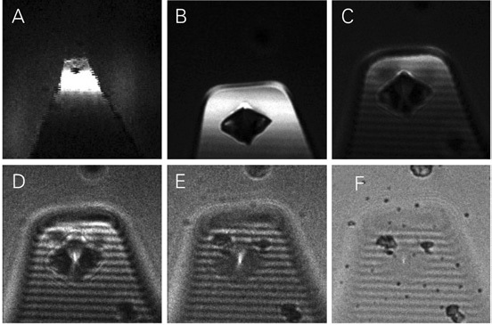 Backscatter images of AFM cantilever with a SiN tip. The bright spot in the image center is the tip apex. After iteratively zooming in and scanning the AFM tip, the laser focus of the MicroTime 200 can be directly positioned at the tip apex. The sample stage is moved 2µm in z-direction for every image B-F.