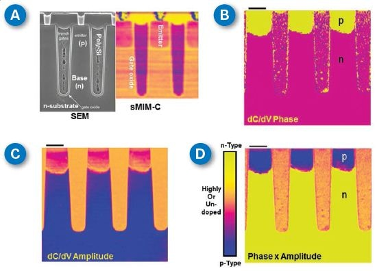 SEM and sMIM studies of an IGBT cross-section-polished sample from Chipworks. (A) Comparison of SEM and sMIM-C results on resolving different materials; (B) sMIM dC/dV phase image; (C) sMIM dC/dV amplitude channel; and (D) An image constructed from (B) and (C), similar to a traditional SCM image. Scale bar is1 µm. SEM image courtesy of Chipworks.