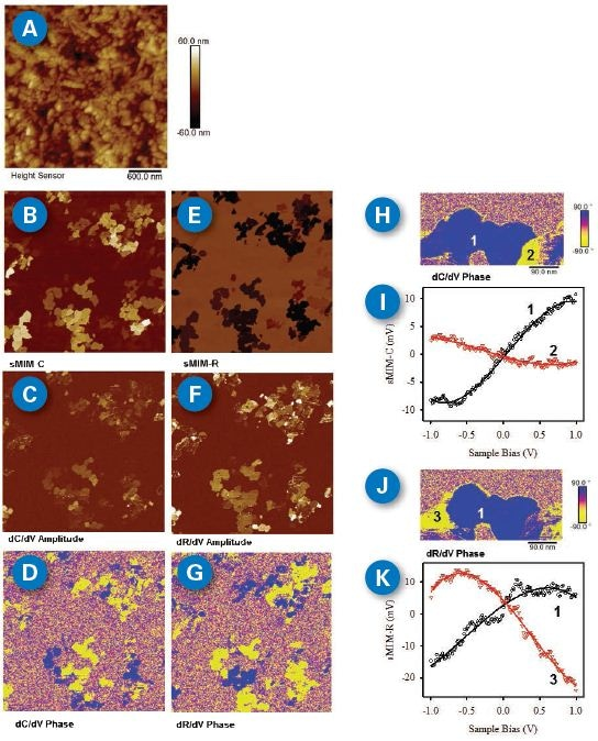 sMIM images and local capacitance- / resistance-voltage spectroscopy of a ?-Fe2O3 nanoparticle sample. (A) Topography shows 100 nm x 500 nm spindle particles; (B) sMIM-C reveals the location permittivity variation; (C) dC/dV amplitude; (D) dC/dV phase indicates different dopant polarities; (E) sMIM-R demonstrates different local conductivities; (F) dR/dV amplitude; (D) dR/dV phase; (H) highresolution dC/dV phase image; (I) site-specific capacitance-voltage spectroscopy. Locations are indicated in (H); (J) high-resolution dR/dV phase image at the same location as (H); (K) site-specific resistance-voltage spectroscopy.