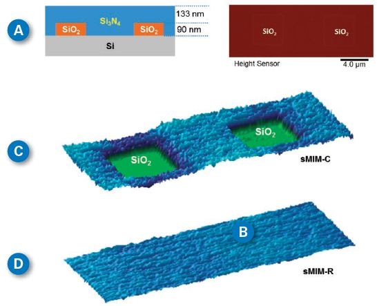 (A) A buried structure reference sample was fabricated on a Si wafer. 90nm thermal SiO2 was grown on the wafer and patterned. 1um LPCVD Si3N4 was deposited to fully cover the SiO2. Chemical mechanical polishing was used to polish the sample until the Si3N4 was about 223 nm; (B) The topography of the polished reference surface with a roughness of 0.44 nm in the imaged area. (C) and (D) are sMIM-C and sMIM-R channels respectively. As expected, contrast only appears in the dielectric channel (sMIM-C) and vanishes in the conductivity channel (sMIM-R).