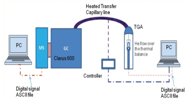Schematic of PerkinElmer TGA-GC-MS set up with a heated transfer capillary line.