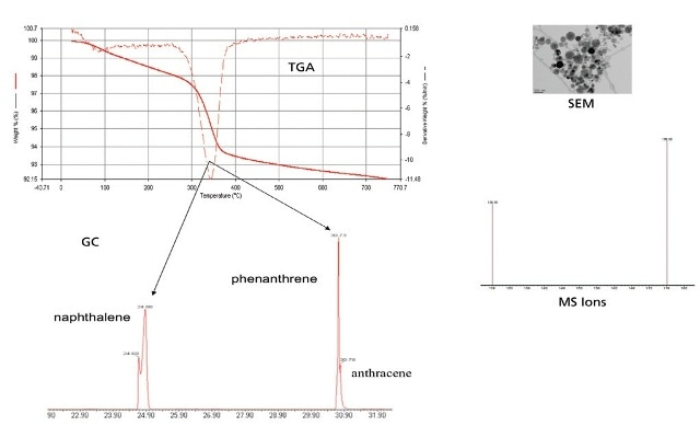 TGA-GC-MS data with SEM image.
