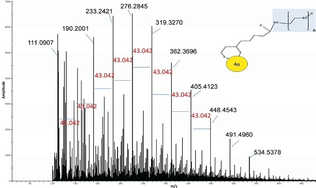 Spectrum of Au-lipoic acid-BPEI nanoparticles was similar to the BPEI standard suggesting BPEI was bound to the Au.