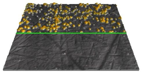 In situ AFM image in 1mM CuSO4 + 50mM H2SO4 showing Pt surface covered with electrochemically deposited copper clusters at E = -0.05V (upper part) and bare Pt surface at E = 0.3V (lower part), 3µm × 3µm, vertical range 100nm. The potential scan was performed at the position of the horizontal green line.