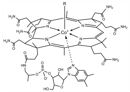 Molecular structure of vitamin B12.