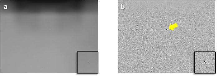 a) Standard vs. b) enhanced vision images of a small defect on the surface of a bare silicon wafer. The insets frames show a magnified view of the defect. The small defect is easily observable in enhanced vision. The larger image dimensions are 550 µm × 413 µm.