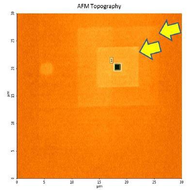 AFM of a Facet defect with several SEM burn-marks.