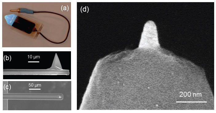 (a) Pre-mounted PeakForce SECM probe; (b) SEM side view image of the cantilever; (c) SEM top view image of the cantilever showing the 15-µm-wide Pt conductive path; (d) SEM image revealing exposed Pt-coated tip apex with ~50 nm endtip diameter and ~200 nm tip height (adapted from Nellist et al., Nanotechnology, 2017, 28(9), 095711, IOP Publishing30).
