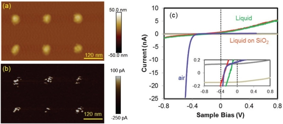 High-resolution PeakForce TUNA in de-ionized H2O measurement for conductivity mapping of an Au nanoelectrode array sample: (A) topography; (B) current map at +0.3 V; and (C) comparison of I-V characteristics of the semiconductor/metal junction in air (blue) and liquid (green-red). The background current in liquid is captured by landing the probe at the oxide region (grey). Voltage ramp rates of 400 mV/s were employed. For each measurement, the voltage was cycled for both the forward and backward ramping and the curves were plotted together (adapted and modified from Huang, Z. et al.32).