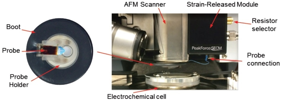 PeakForce SECM accessories with a pre-mounted nanoelectrode probe loaded. (adapted from Huang, Z. et al.32).