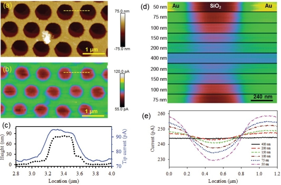 PeakForce SECM images of a Au-SiO2 nanomesh electrode prepared by nanosphere lithography: (a) topography of the Au pattern on the SiO2 substrate; (b) electrochemical map captured in the lift scan, while following the sample topography at a separation of 75 nm; (c) line profiles of both the topographic height and electrochemical current at the same location, labeled by the yellow dashed lines in (a) and (b); (d) tip current at sequentially varied lift heights as indicated in the image (tip and sample potentials were -0.1 V and -0.4 V vs Ag/AgCl, respectively); (e) the tip current contrast is clearly illustrated by cross-sectional analysis (adapted from Nellist et al., Nanotechnology, 2017, 28(9), 095711, IOP Publishing30).