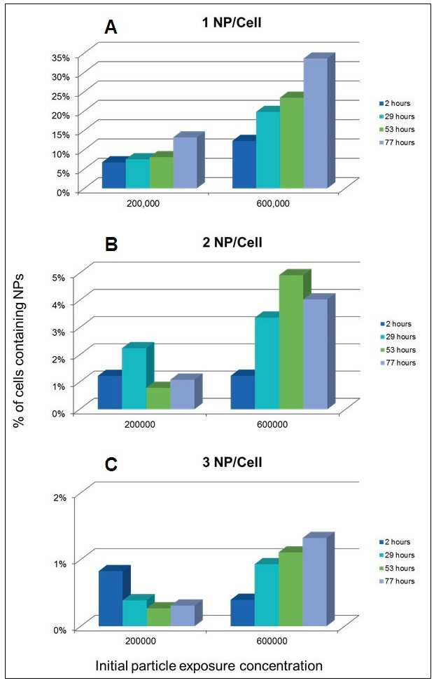 Percentage of cells containing 1 (A), 2 (B), and 3 (C) NPs per cell over time as a functions of NP concentration in the exposure media.